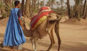 """Императорски тур"" в Мароко"